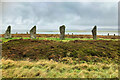 HY2913 : Ring of Brodgar by David Dixon