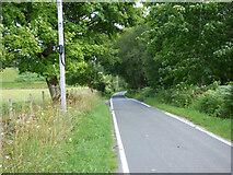 NR9379 : The B8000 road by Thomas Nugent