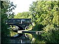 SP3581 : Approaching Navigation Bridge, no.6, Coventry Canal by Alan Murray-Rust