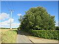 TQ6359 : Wrotham Water Lane, near Trottiscliffe by Malc McDonald