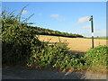 TQ6762 : Public footpath near Snodland by Malc McDonald