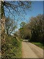 SX7762 : Lane to Willing Cross by Derek Harper
