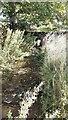 SD9788 : West Beck beside the Thornton Rust sheepfold by Luke Shaw