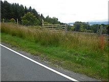 NR9275 : Deer fence near Auchanaskeioch by Thomas Nugent