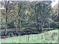 SJ1936 : Afon Teirw by Alan Hughes