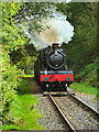 SD7914 : Steam Locomotive 'Dinmore Manor' approaching Summerseat by David Dixon