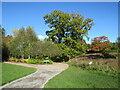 SE2853 : RHS Harlow Carr Gardens, Harrogate by Malc McDonald