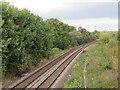SE3156 : Railway line near Harrogate by Malc McDonald