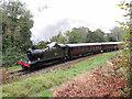 SO6204 : Dean Forest Railway near Norchard by Gareth James