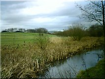 SD9201 : Fairbottom Branch Canal by Keith Williamson