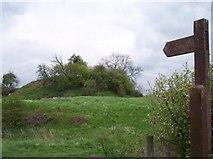 SO7937 : Castle Tump, Castlemorton by Bob Embleton