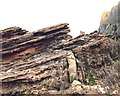 NT8171 : Hutton's Unconformity, Siccar Point by Anne Burgess
