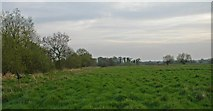 TL0536 : Flitton Nature Reserve by Peter Roberts