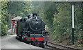 SD3787 : Lakeside & Haverthwaite Steam Railway by neil hanson