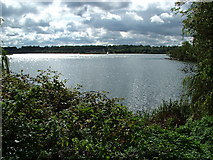 SU6570 : Looking south from Garston Lock by Jonathan Dew