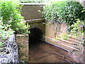 SP0356 : Bridge over tributary of Piddle Brook. by Richard  Dunn