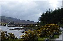 SH6737 : Llyn Trawsfynydd by Janine Forbes
