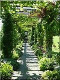 SU8612 : West Dean Gardens by Janine Forbes