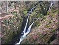 NY3804 : Stockghyll Falls by Ian Adams