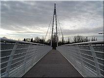 SJ8092 : Footbridge over the M60 by alan halfpenny