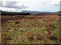 NH2276 : The view towards An Teallach by John Aldersey-Williams
