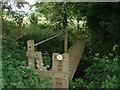 SO7343 : Mind the nettles by John Phillips