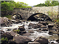 V9180 : River and Bridge near the Killarney National Park by Pam Brophy