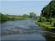 ST9102 : The Musical sound of the River Stour at Spetisbury by Chris Hayles