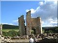 NU1109 : Edlingham Castle by Robin Phillips