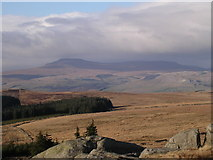 SD7659 : View of Ingleborough from Whelp Stone Crag by Martin Laverty