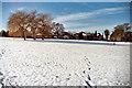 TQ1681 : Cleveland Park, Ealing by Richard Baker