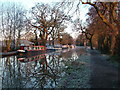 TQ0558 : Wey Navigation Canal, Pyrford by David Griffiths
