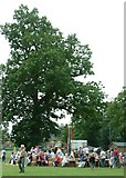 TG0403 : Hardingham Fete 29/6/05 at High Common by Nick Pounder