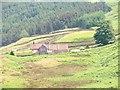 NZ6803 : St Helena, Danby Head by Mick Garratt