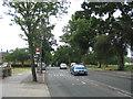 TQ5592 : Dagnam Park Drive, Harold Hill, Essex by John Winfield