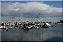 D3115 : Glenarm Marina by Bob Jones