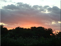 TQ2444 : Sunset over woodland to the North-West of Collendean Lane by James Insell