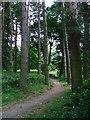 NZ1746 : Malton Picnic Area by Mick Garratt