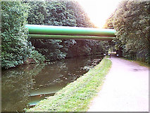 SE1839 : Huge pipes over the Leeds & Liverpool Canal by David Spencer