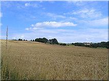SE2425 : Upper Batley by Mick Melvin