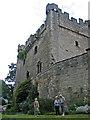 NZ0461 : Bywell Castle by Dennis Lovett