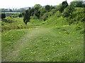 SU7431 : Noar Hill Wildlife Reserve by Bob Ford