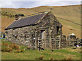 SC4289 : Building and sheep pens, Corrany Valley.  Isle of Man. by Andy Radcliffe