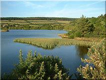 SC2878 : Kionslieu Reservoir - Isle of Man by Jon Wornham