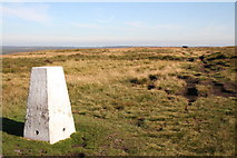 SE0030 : Trig Point, High Brown Knoll by Mark Anderson