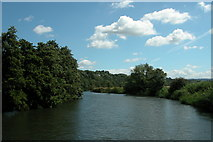 ST7066 : River Avon, passing through Kelston Park. by Martyn Pattison