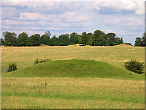 SU1242 : Mounds: Stonehenge by Pam Brophy