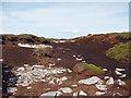 NN8733 : Peat Bog by Iain McDonald