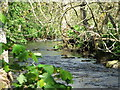NZ0084 : River Wansbeck by Christine Westerback