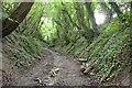 SU7338 : Water Lane by Ben Gamble
